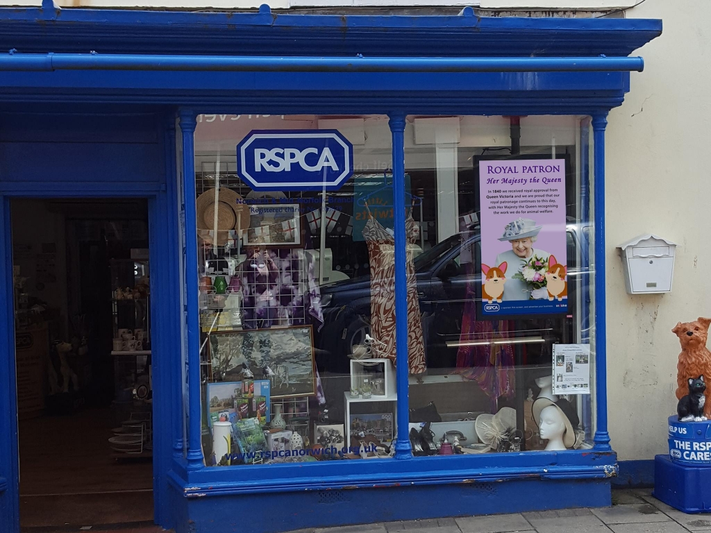 inVoke Digital Signage high brightness shop window screen installation for RSPCA charity shop